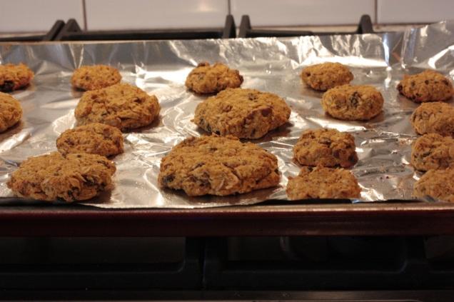 bird cookies 3