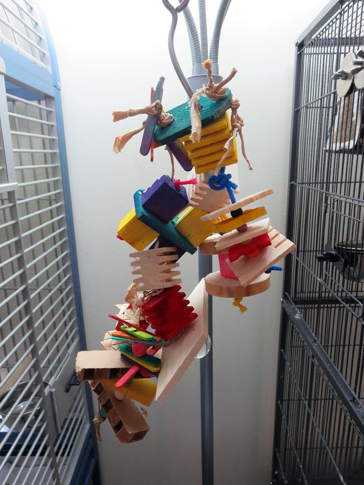 Skewer Fillers 3 Rope And Loop Parrot 1 2 3