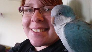 parrot123blog.wordpress.com